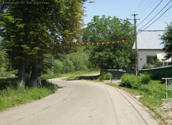 2012 07 01 (Ciprian Porumbescu) 054 [Rezolutia desktop-ului]