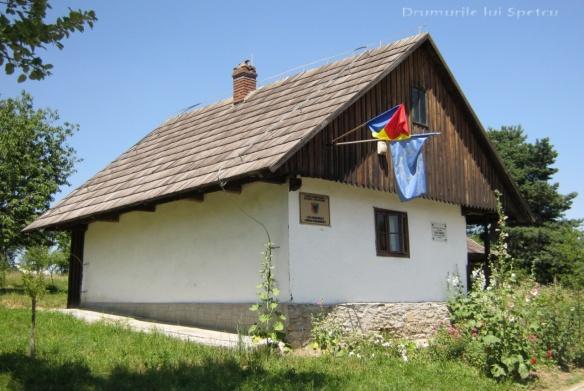 2012 07 01 (Ciprian Porumbescu) 087 [Rezolutia desktop-ului]