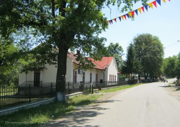 2012 07 01 (Ciprian Porumbescu) 092 [Rezolutia desktop-ului]