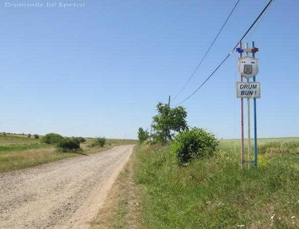 2012 07 01 (Ciprian Porumbescu) 102 [Rezolutia desktop-ului]