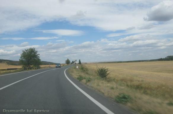 2012 08 06-15 (La Mare Si Nu Numai) 612 [Rezolutia desktop-ului]