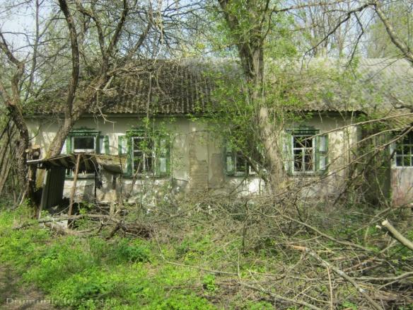 2013 05 01-05 (Cernobil)-007 [Rezolutia desktop-ului]
