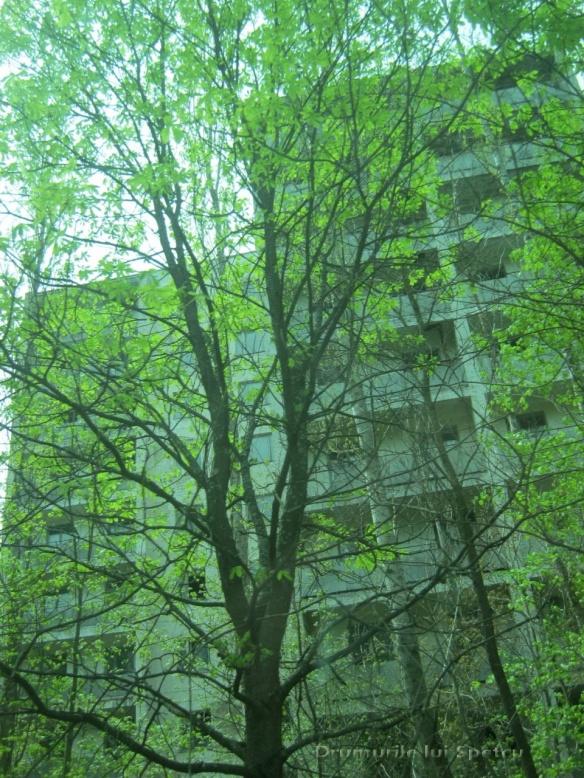 2013 05 01-05 (Cernobil)-034 [Rezolutia desktop-ului]