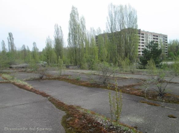 2013 05 01-05 (Cernobil)-041 [Rezolutia desktop-ului]