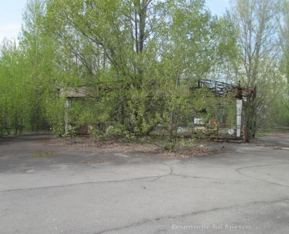 2013 05 01-05 (Cernobil)-048 [Rezolutia desktop-ului]