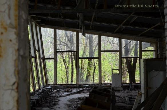 2013 05 01-05 (Cernobil)-062 [Rezolutia desktop-ului]