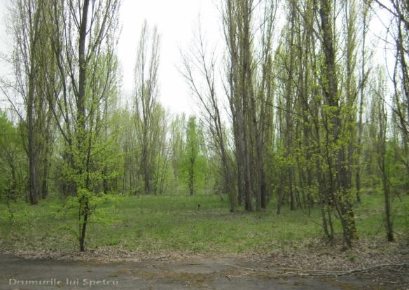 2013 05 01-05 (Cernobil)-068 [Rezolutia desktop-ului]