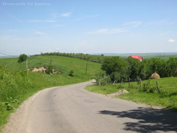 2013-06-16-botesti-horodniceni-rotopanesti-mihaiesti-pocoleni-043-rezolutia-desktop-ului