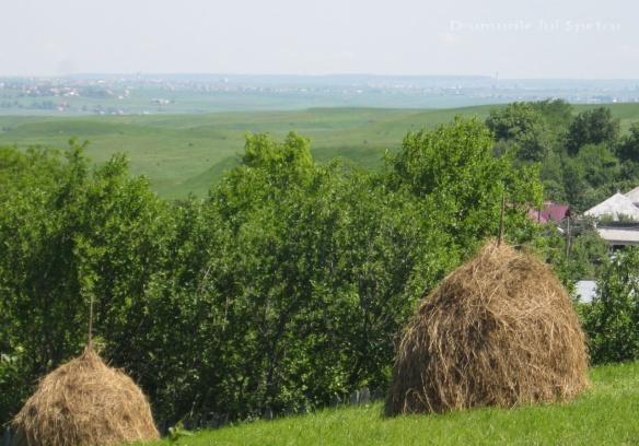 2013-06-16-botesti-horodniceni-rotopanesti-mihaiesti-pocoleni-044-rezolutia-desktop-ului