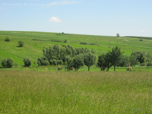 2013-06-16-botesti-horodniceni-rotopanesti-mihaiesti-pocoleni-097-rezolutia-desktop-ului