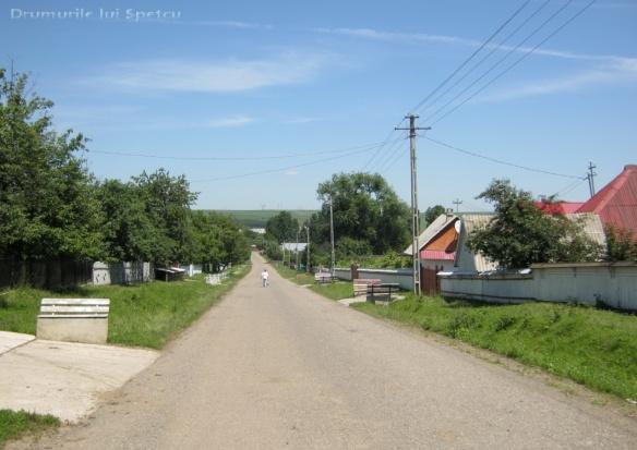 2013-06-16-botesti-horodniceni-rotopanesti-mihaiesti-pocoleni-143-rezolutia-desktop-ului