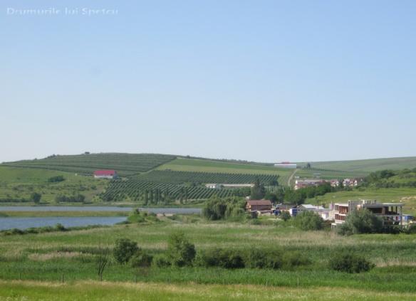 2013-06-16-botesti-horodniceni-rotopanesti-mihaiesti-pocoleni-197-rezolutia-desktop-ului