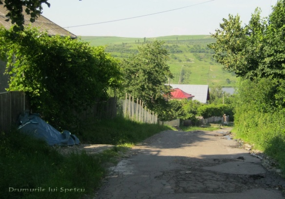 2013-06-16-botesti-horodniceni-rotopanesti-mihaiesti-pocoleni-203-rezolutia-desktop-ului